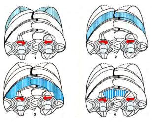 Шнековый компрессор принцип работы